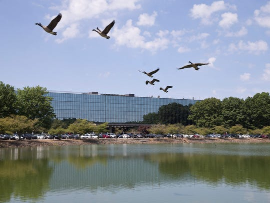 iCIMS, a fast growing technology company, signs a lease to take up 300,000 plus-square-feet of space in the former Bell Works building.  Holmdel, NJ Wednesday, July 20, 2016@dhoodhood