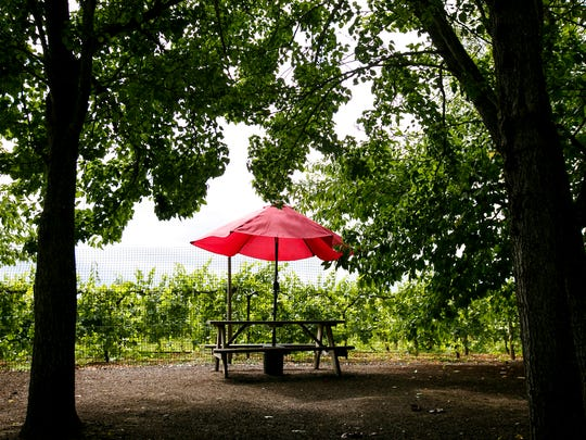 Picnic tables are scattered around Arcane Cellars'