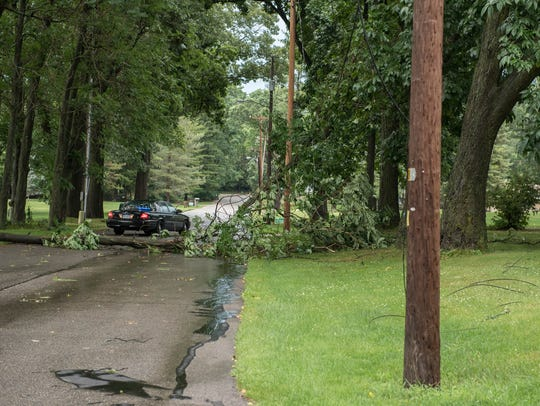 A downed tree near the intersection of East Hamilton