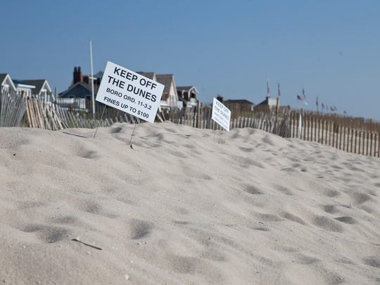 A portion of the beach showing dunes where an upcoming