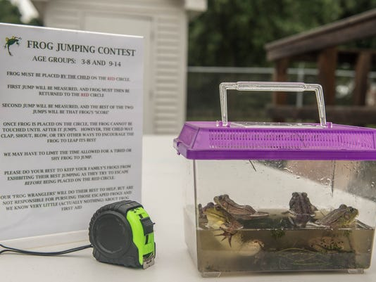 Frog Jumping Contest 9