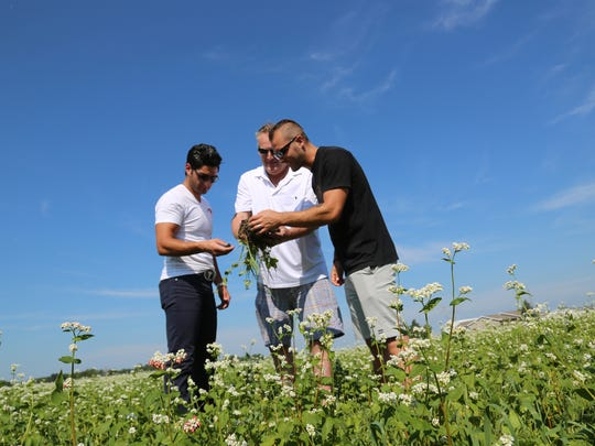 Cover Crop Ranch partners Gino Baratta, left, Jeff Rasawehr and Aaron Cozadd inspect the soil one of their fields near Celina, Ohio.