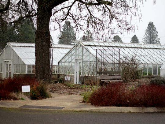 The glass greenhouses are seen at the Pringle Creek Community in 2015. Urban gardening classes are beginning Feb. 4 at the community's Sustainable Living Center.