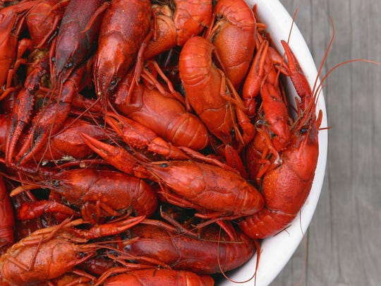 Bowl of fresh hot boiled Louisiana crawfish viewed from above.