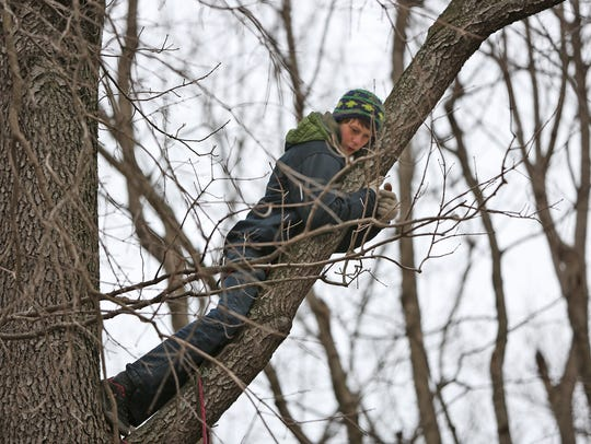 Carter Hays, 15, hangs out in a tree during a protest