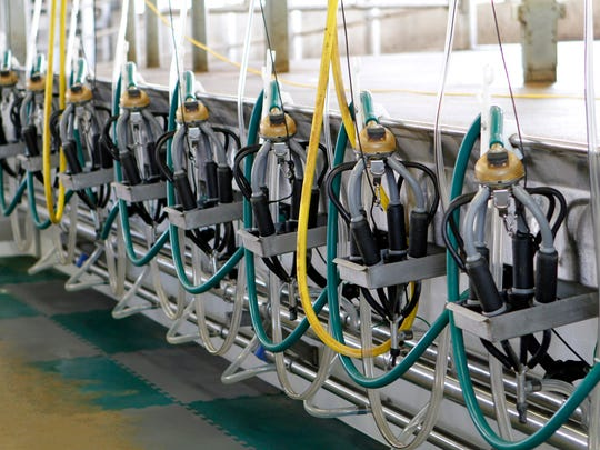 Milking units in a milking parlor.