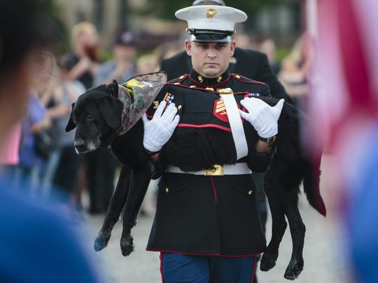 U.S. Marine veteran Lance Cpl. Jeff DeYoung carries Cena a 10-year-old black lab who was a military service dog on July 26, 2017 in Muskegon, Mich.