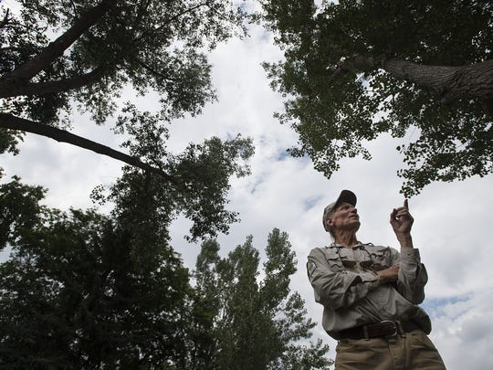 Fort Collins resident Jim Henriksen shows the two large cottonwood trees in his backyard, Wednesday, July 26, 2017, in Fort Collins, Colo.