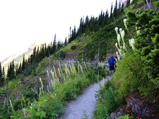 Highline Trail in Glacier