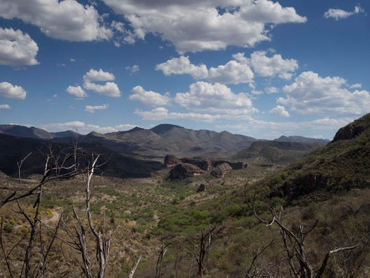 The Northern Jaguar Reserve in Sonora, Mexico.