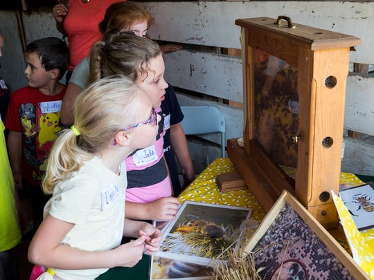 Third- and fourth-graders from Algonquin Elementary School learn about bees at Project RED, Sept. 21. Project RED, or Rural Education Day, is an opportunity for elementary school students to learn about farming and agriculture through presentations and hands-on experiences at Goodells Park.