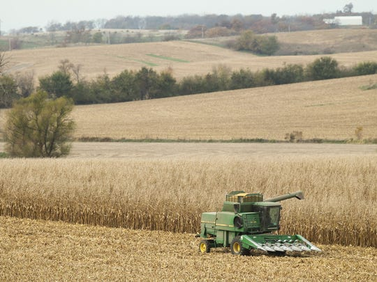 A combine harvests corn on a farm in Wheatland, Iowa, in 2016