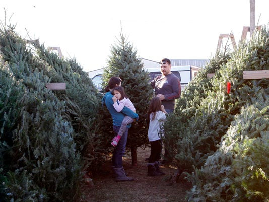 buy local buy a real christmas tree - Cheap Real Christmas Trees For Sale