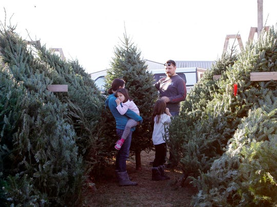 The Haberer family, (from left) Shannon, Addison, 4, Elliott, 7, and Jeremy, of Waukesha, select a Christmas tree at Cozy Nook Farm on Nov. 24. The family returns to Cozy Nook each year because of the nice people at the farm.