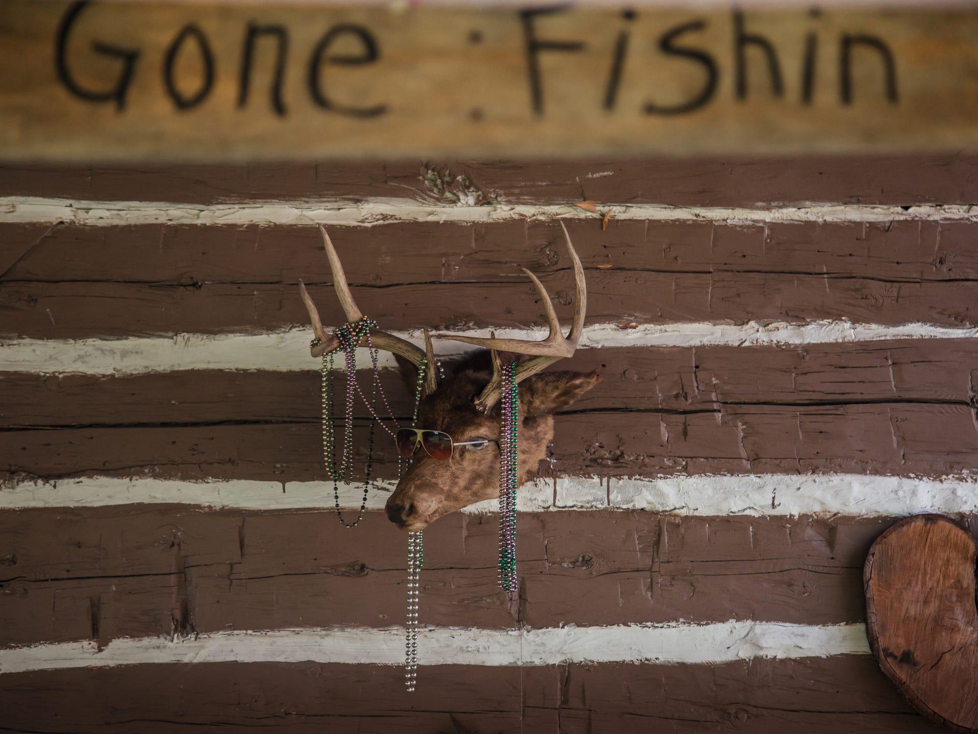 A deer mount hangs outside of a cabin where Jim Vivian