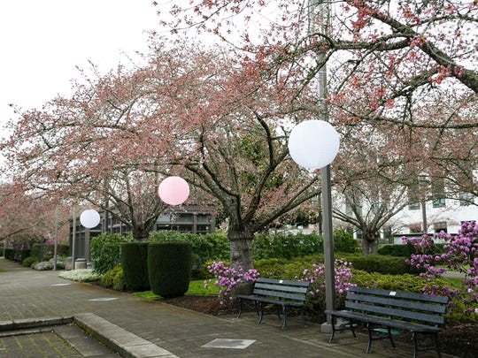 Cherry Blossom Day: Celebrate the rich impact of the Japanese culture on Oregon and the history of the cherry industry with exhibits, booths, music and more, 10 a.m. to 2 p.m. March 16, Oregon State Capitol, 900 Court St. NE. Free. facebook.com/565301450599446.