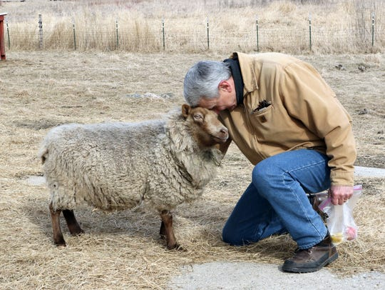 Author Jim Thompson, of Ixonia, greets Peanut, a sheep