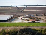 Oregon bills seek nation's toughest dairy regulations