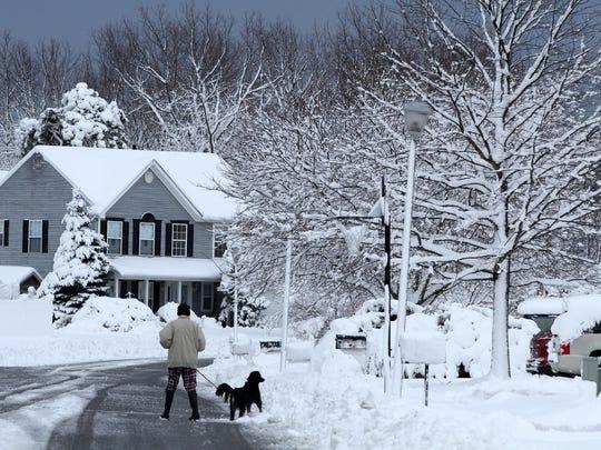 A woman walks her dog along Oak Forest Drive in Brick