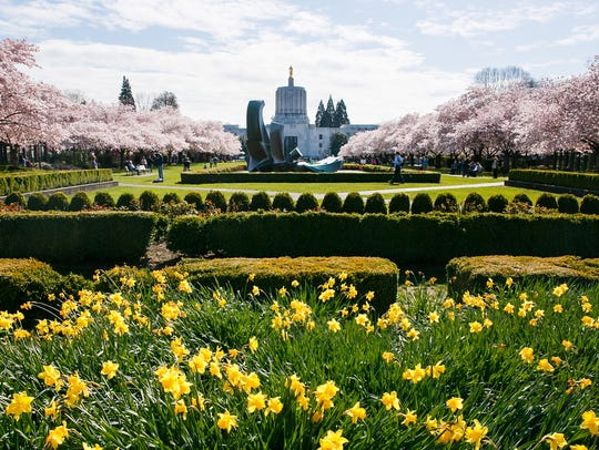 The Willamette Valley Marathon, Half-Marathon and Half-Marathon Relay will begin at the Oregon State Capitol on Sunday, May 6.