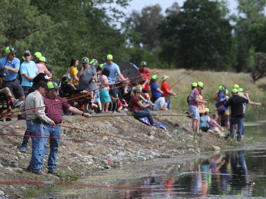 Teachers and volunteers help kids fish Thursday during the annual J.F. Shea fishing party in Redding.