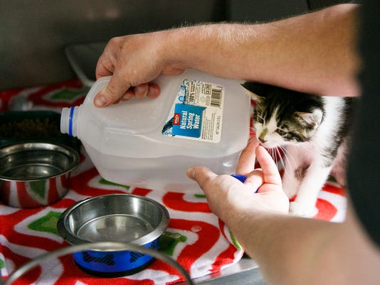 Lead-SAL-WillametteHumaneSociety-WaterContamination-MJS-009.JPG