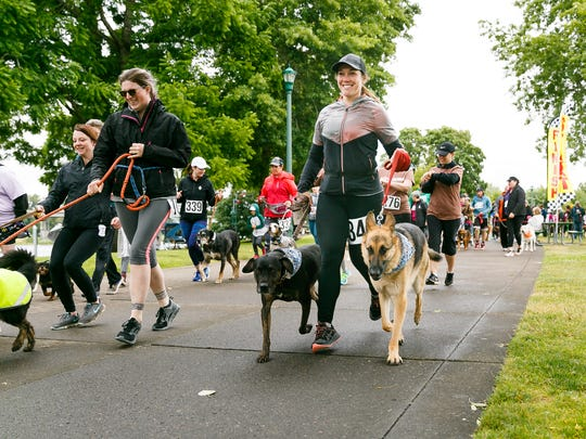 Britney Stanbro runs with her dogs Conway, a Catahoula hound, and Bear, a German shepherd, at the seventh annual WillaMutt Strut on Sunday, June 10, 2018, in Riverfront Park. Proceeds from the dog-friendly event go to the Willamette Humane Society.