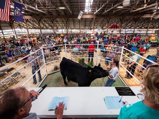 636676130219822437-20180719-livestock-auction-0055.jpg