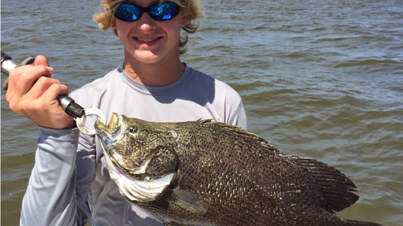 The tripletail action is happening.