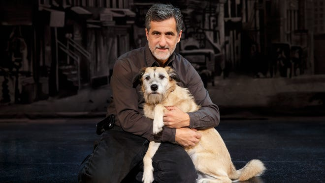 """Animal trainer Bill Berloni coached Sunny to play Sandy in the new production of """"Annie."""""""