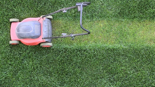 Follow the one-third rule to mow your way to a beautiful lawn.