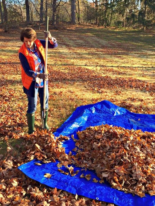 fall landscaping checklist - raking
