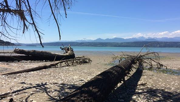 A 20-acre Hood Canal property north of Poulsbo will be preserved as marine habitat.