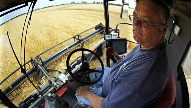 Jay Nord harvests wheat from an 80-acre plot near Wolverton, Minnesota, August 2013. The number of farms in Minnesota fell 8 percent from 2007 to 2012 and the biggest farms in the state got bigger.