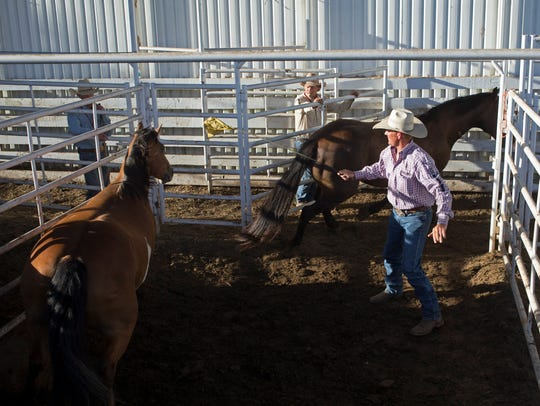 Tim Bridwell moves horses in the staging area at the