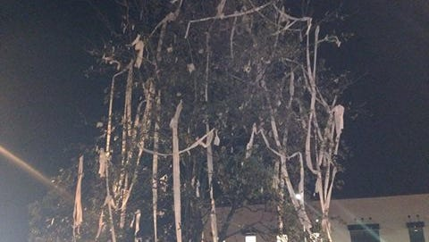 One of the new Toomer's Corner oak trees was set on fire early Sunday morning just hours after Auburn's 18-13 win over No. 18 LSU. The newly planted tree, shown here after Auburn Fire Department put out the blaze,was engulfed in flames after a person set the toliet paper on fire.