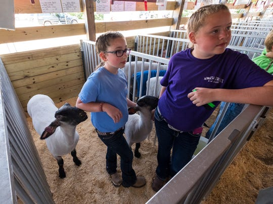 Isabella Bott, 11, left, and Katie White, 11, hang out with their sheep Thursday, July 19, 2018 before the St. Clair County 4-H and Youth Fair livestock auction.