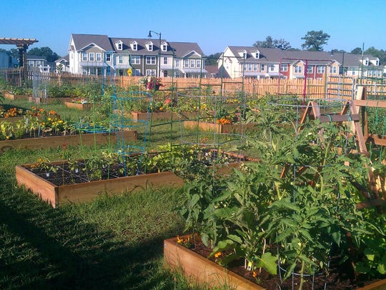 Southwood has a thriving community garden.  Workshops