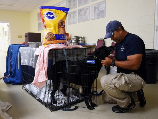 The Humane Society of Vero Beach and Indian River County