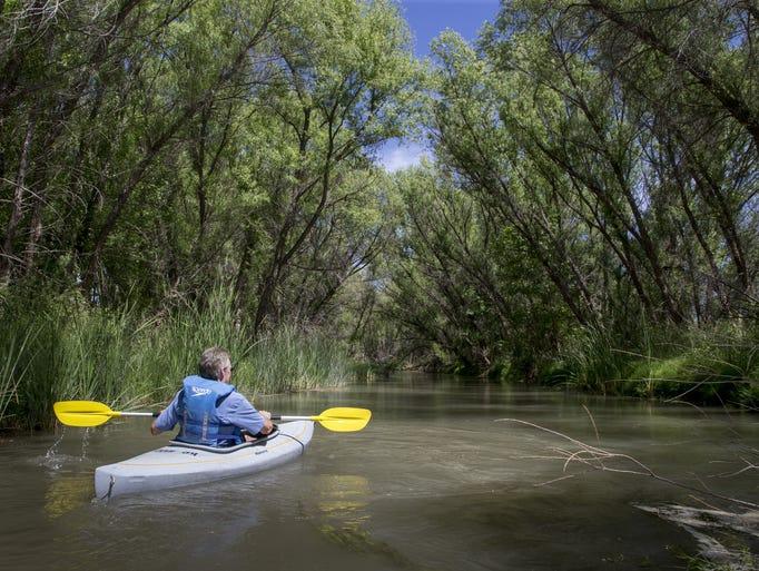 The Verde River is an ecological gem, but high demand