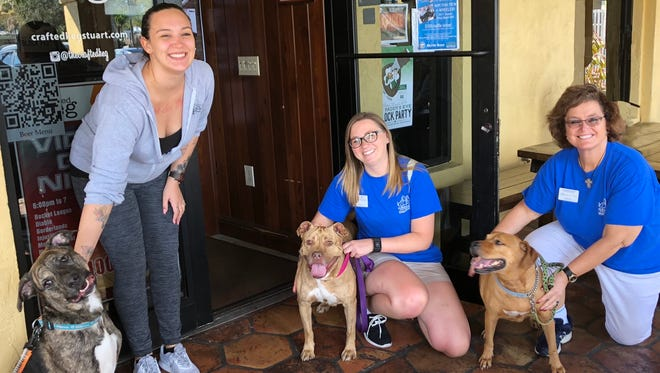 From left are Crafted Keg owner Victoria Pattee and her dog, Dallas, and HSTC volunteers Kirsten Gutowski with shelter pup Lady, and Mary Anne Searle with shelter pup Honey Bell.