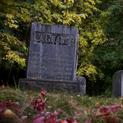 Greenwood Halloween Special
