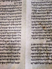 The text of a 200-year-old Torah scroll that underwent