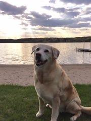When Don and Julie Ramler found their home near Kraemer Lake, their dog Maggie also found new play space.
