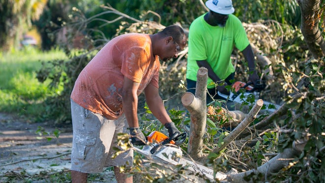 David Ortiz, left, works with Jeffrey Barnes, right, and a crew from Tobler Construction on Friday as they remove downed trees and limbs on Dupree Street in Fort Myers.