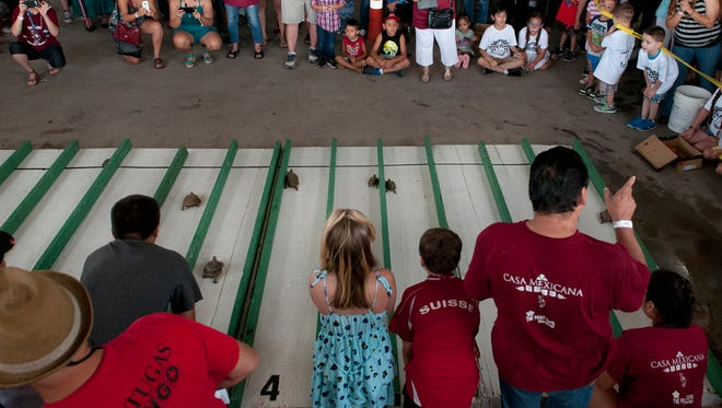 A huge crowd gathered Sunday, June 26, 2016, to watch the 28th annual Tortugas Turtle Races at the Parish of Our Lady of Guadalupe.
