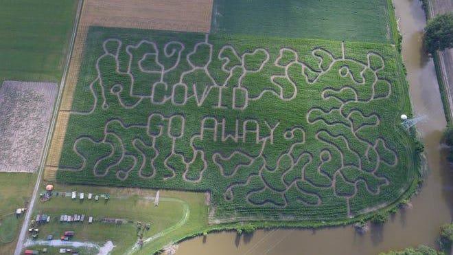 "13-acre corn maze has a message for COVID-19: ""Go away."""