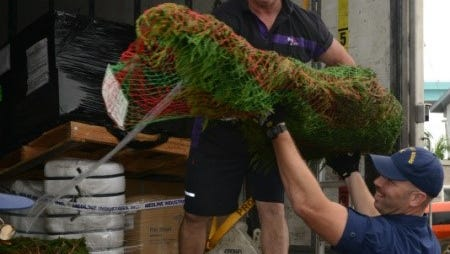 Christmas trees were donated to the U.S. Coast Guard station in Fort Myers Beach.