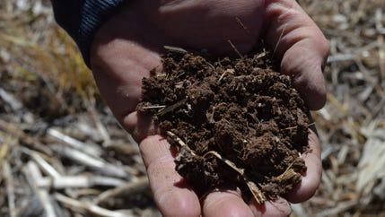 A handful of composted manure contains carbon, nitrogen, and phosphorus. All of these are important for plant growth.