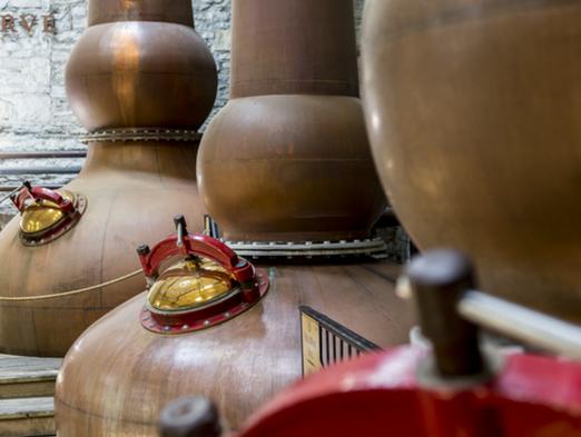 Tour Kentucky's historic Woodford Reserve Distillery
